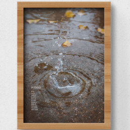 poster puddle