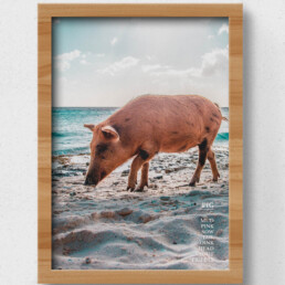 sustainable pig poster