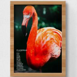 sustainable flamingo poster