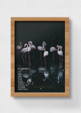 flamingo sustainable poster