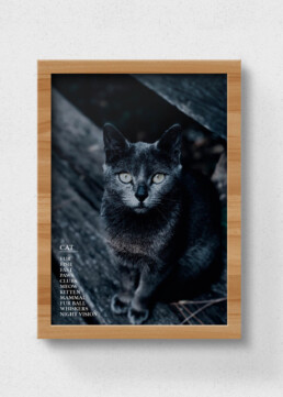 sustainable poster cat